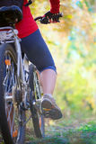 Flicka som cyklar i skog Royaltyfria Bilder