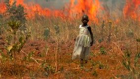 Flicka som fångas i skogsbrand arkivfilmer