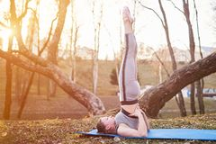 Flicka som gör Sarvangasana på en yoga som är matt i parkera Fotografering för Bildbyråer
