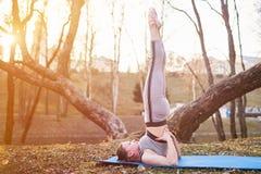 Flicka som gör Sarvangasana på en yoga som är matt i parkera Arkivfoto