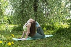 Flicka som gör yoga i naturen, spenslig flicka, träd arkivbild