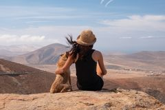 Flicka som håller ögonen på panoraman med hennes valphund royaltyfri foto
