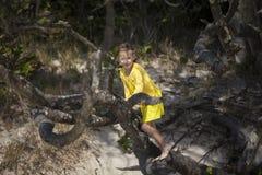 Flicka som klättrar ett träd Arkivbild