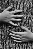 flicka som kramar treen Royaltyfria Bilder