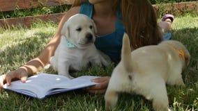Flicka som ligger på gräset som försöker att läsa och spelar med valpar arkivfilmer
