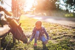 Flicka som matar den bruna hästen Fotografering för Bildbyråer