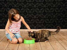 Flicka som matar en katt Royaltyfri Foto