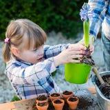 Flicka som planterar blommakulor Arkivbild