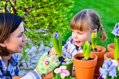 Flicka som planterar blommakulor Fotografering för Bildbyråer
