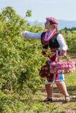 Flicka som poserar under rosplockningfestivalen i Bulgarien fotografering för bildbyråer