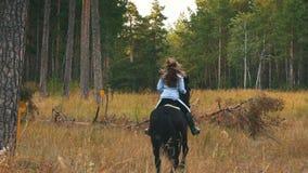 Flicka som rider en häst som går i träna lager videofilmer