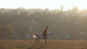Flicka som rider en häst som galopperar över fältet långsam rörelse arkivfilmer