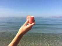 Flicka som rymmer en biten persika i händerna på havsbakgrunden arkivfoton