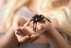 Flicka som rymmer en stor spindel på händer Royaltyfri Fotografi
