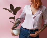 Flicka som rymmer en vas med en fikus arkivbilder