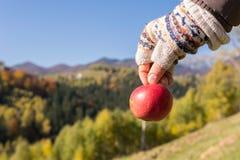 Flicka som rymmer ett äpple i hans naturliga miljö Arkivfoto