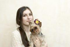 Flicka som sitter och rymmer en yorkshire terrier arkivfoto