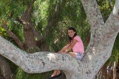 Flicka som sitter upp i träd fotografering för bildbyråer