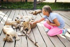 Flicka som slår lejonet royaltyfri foto