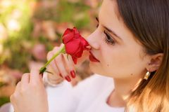 Flicka som sniffar en röd ros i San valentindag Arkivbilder