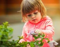 Flicka som spelar i gatan solljus Royaltyfria Bilder