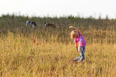 Flicka som spelar med en Border collie Arkivfoto