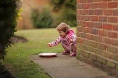 Flicka som spelar med vatten som lämnas för husdjur Royaltyfri Foto