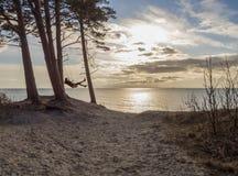 Flicka som svänger på en gunga i en pinjeskog på en sanddyn över Östersjön i Klaipeda, Litauen royaltyfria foton