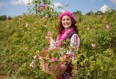 Flicka som väljer bulgariska rosa rosor i en trädgård royaltyfri bild