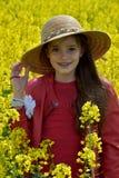 Flickaanseende i canolafält arkivfoto