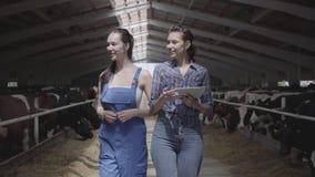 Flickabönder för stående som två gör, turnerar av ladugården med kor på lantgården Flickabonden visar besökarekorna och lager videofilmer