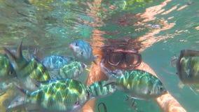 Flickabad i havet med fisken Dykapparatdykning i maskeringar Arkivfoto