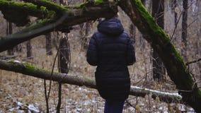 Flickafotograf som går i höstskogen, den första snön långsam rörelse stock video