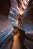 Flickafotvandrarefotvandrare i den spöklika bergsklyftan Escalante Utah Arkivbilder