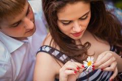 Flickagissningar på en blomma Royaltyfri Fotografi