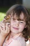 flickahamster henne holdinghusdjur Fotografering för Bildbyråer