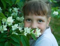 flickajasmin Royaltyfria Bilder