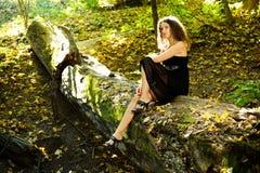 flickajournal Royaltyfria Bilder