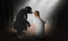 Flickakyssschimpans, natur, förälskelse, hopp royaltyfria bilder