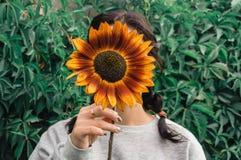 Flickan döljer hennes framsida bak en solros arkivbilder