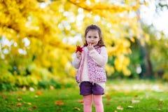 Flickan för den lilla ungen på den härliga hösten parkerar Arkivbilder
