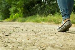 Flickan går på en grusväg till och med träden Royaltyfria Foton