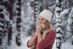 Flickan går på vinterskogen Fotografering för Bildbyråer