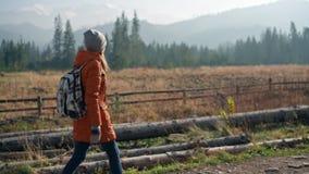 Flickan går in parkerar fjällnära och dalen Filmiska Autumn Slow Motion lager videofilmer