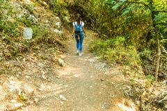 Flickan går vid skogen i sju vårar parkerar i Rhodes royaltyfria bilder
