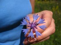 Flickan håller de blåa blommorna Royaltyfri Bild
