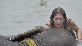 Flickan har en dusch på elefanten arkivfilmer