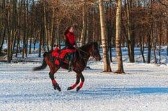 Flickan hoppar over på en brun häst. Arkivbild