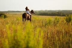 Flickan hoppar på fält på en häst Royaltyfria Foton