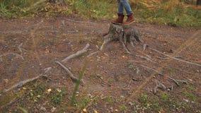 Flickan hoppar på stubbe i skogen lager videofilmer